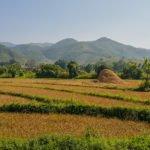 Reisebericht – Trekking in Hsipaw