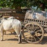 Reisebericht Myanmar – Besonderheiten des Landes und mein Fazit