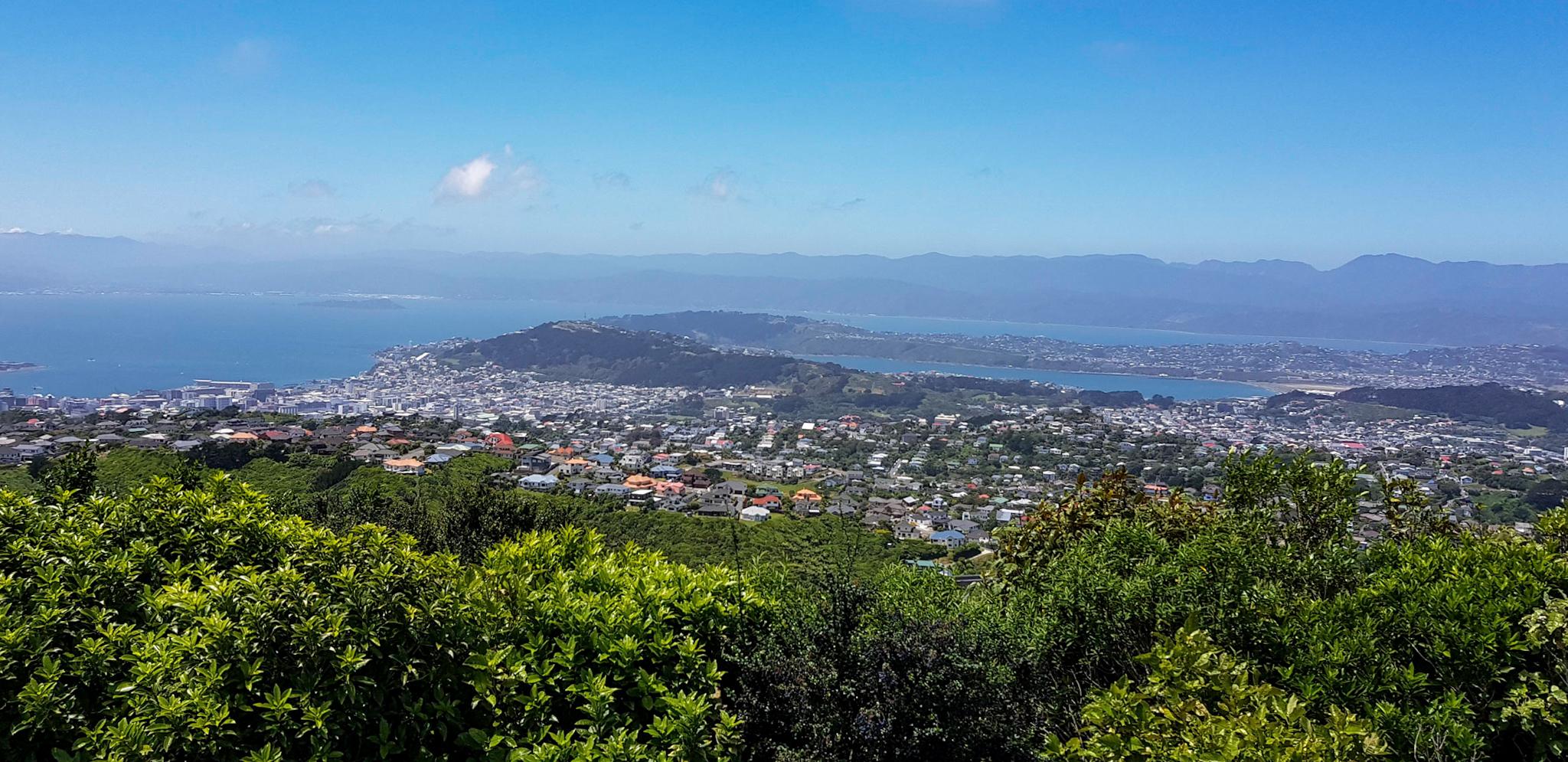 Aussicht vom Windkraftwerk in Wellington