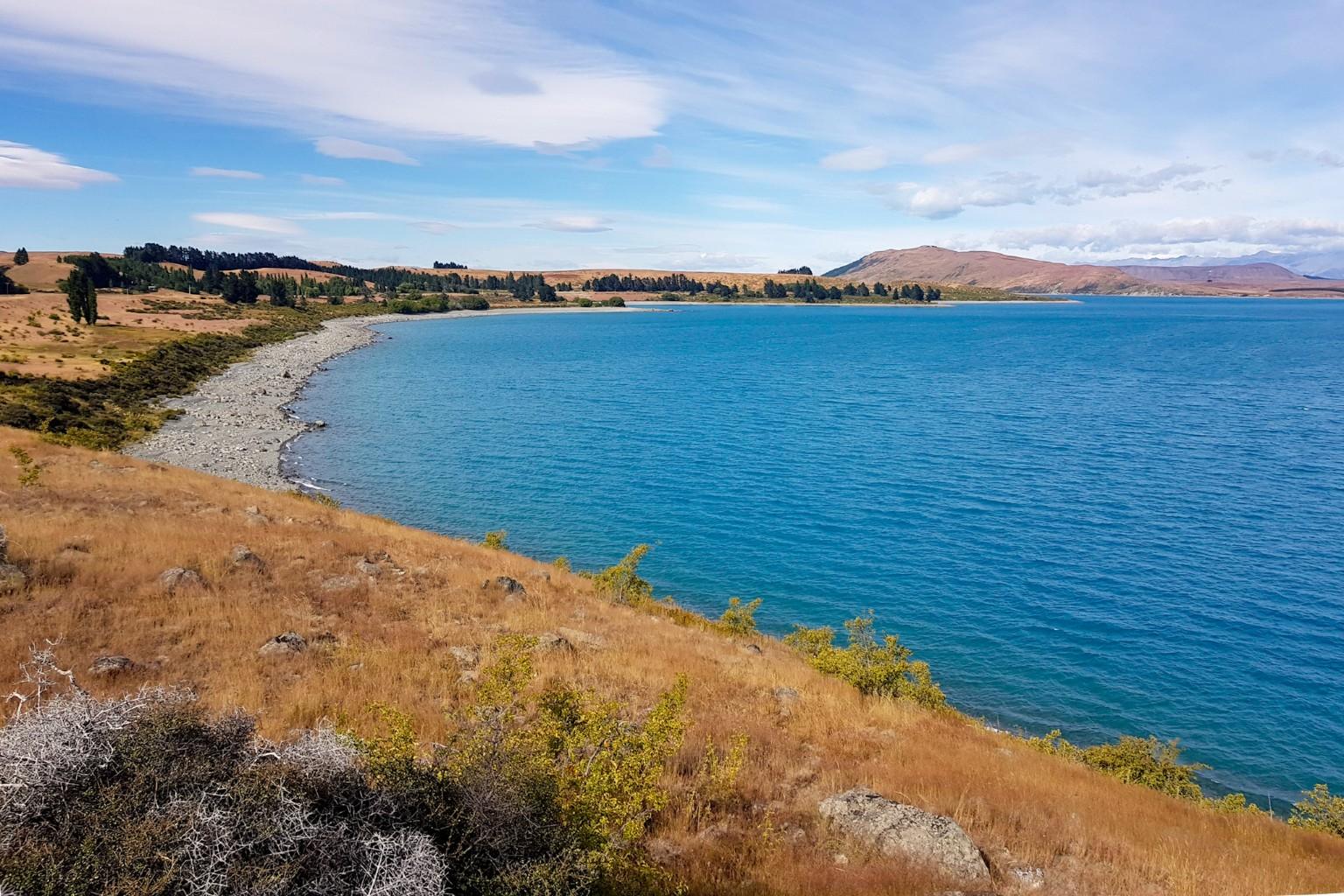 Seeufer des Lake Tekapo